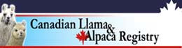 Canadian Llama & Alpaca Association